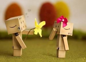 box-boy-couple-danbo-flower-Favim.com-418708